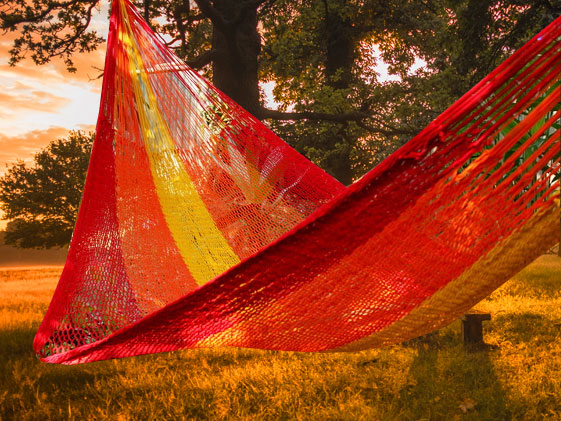 fair trade hammock for sunny day