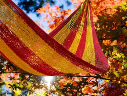fair-trade-hammock-Jungle-Hammock-C4-Cotton-Spain
